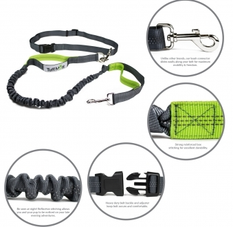 Hands Free Bungee Leash (Gray/Green)