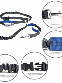 Hands Free Bungee Leash (Gray/Blue)