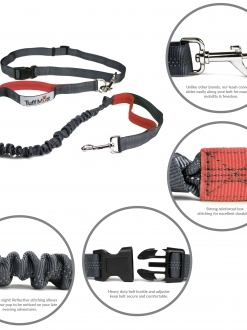 Hands Free Bungee Leash (Gray/Coral)