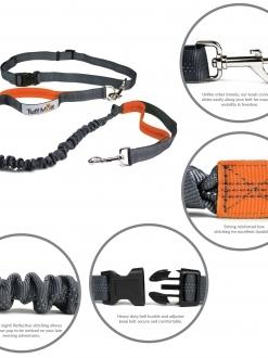 Hands Free Bungee Leash (Gray/Orange)
