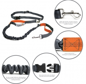 Hands Free Bungee Leash (Gray/Orange)