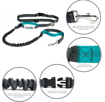 Hands Free Bungee Leash (Gray/Teal)