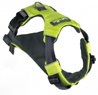 Adventure Dog Harness (Green/Large)