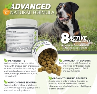 Natural Hip and Joint Supplement Soft Chews